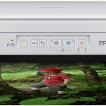 Epson Expression Home XP 257 Multifunzione Compatto con Wi-Fi, Bianco, con Amazon Dash Replenishment Ready