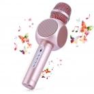 🎤Microfono Karaoke Wireless + Altoparlante Bluetooth